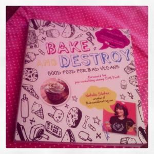 bakeanddestroybook
